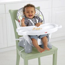 Fisher Price SpaceSaver High Chair - Geo Meadow™