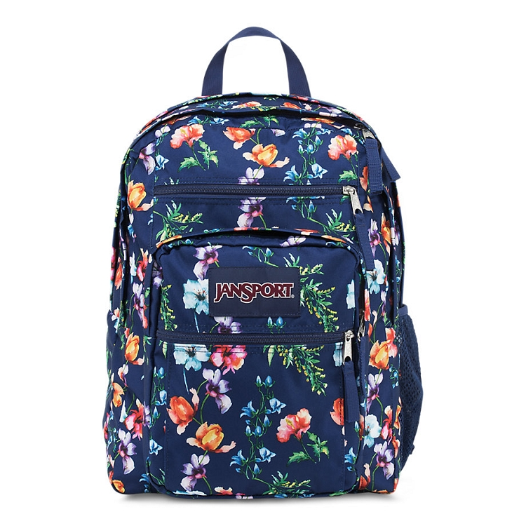 Jansport Big Student Backpack, Multi Navy Mountain Meadow