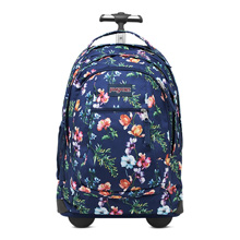 Jansport Driver 8 Backpack, Multi Navy Mountain Meadow