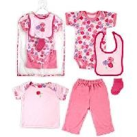 Hudson Baby Rose Mesh Baby Gift Set 6-Pieces