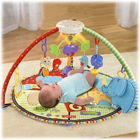 Fisher Price Luv U Zoo™ Deluxe Musical Mobile Gym