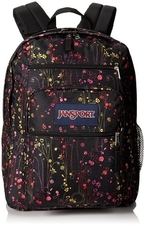 Jansport Big Student Backpack, Multi Climbing Ditzy