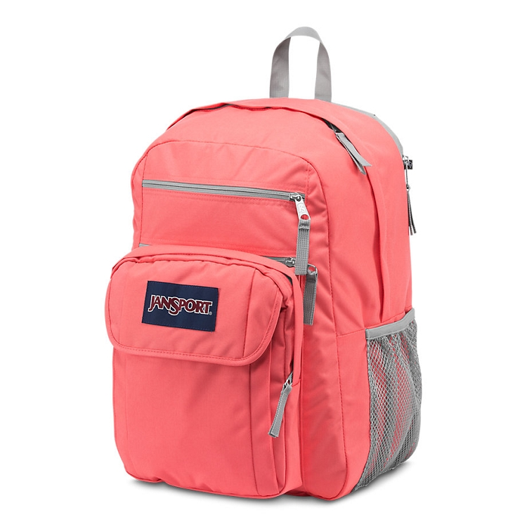 Jansport Digital Student Backpack, Coral Sparkle/White Dots ...