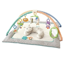 Fisher Price Safari Dreams Deluxe Activity Gym