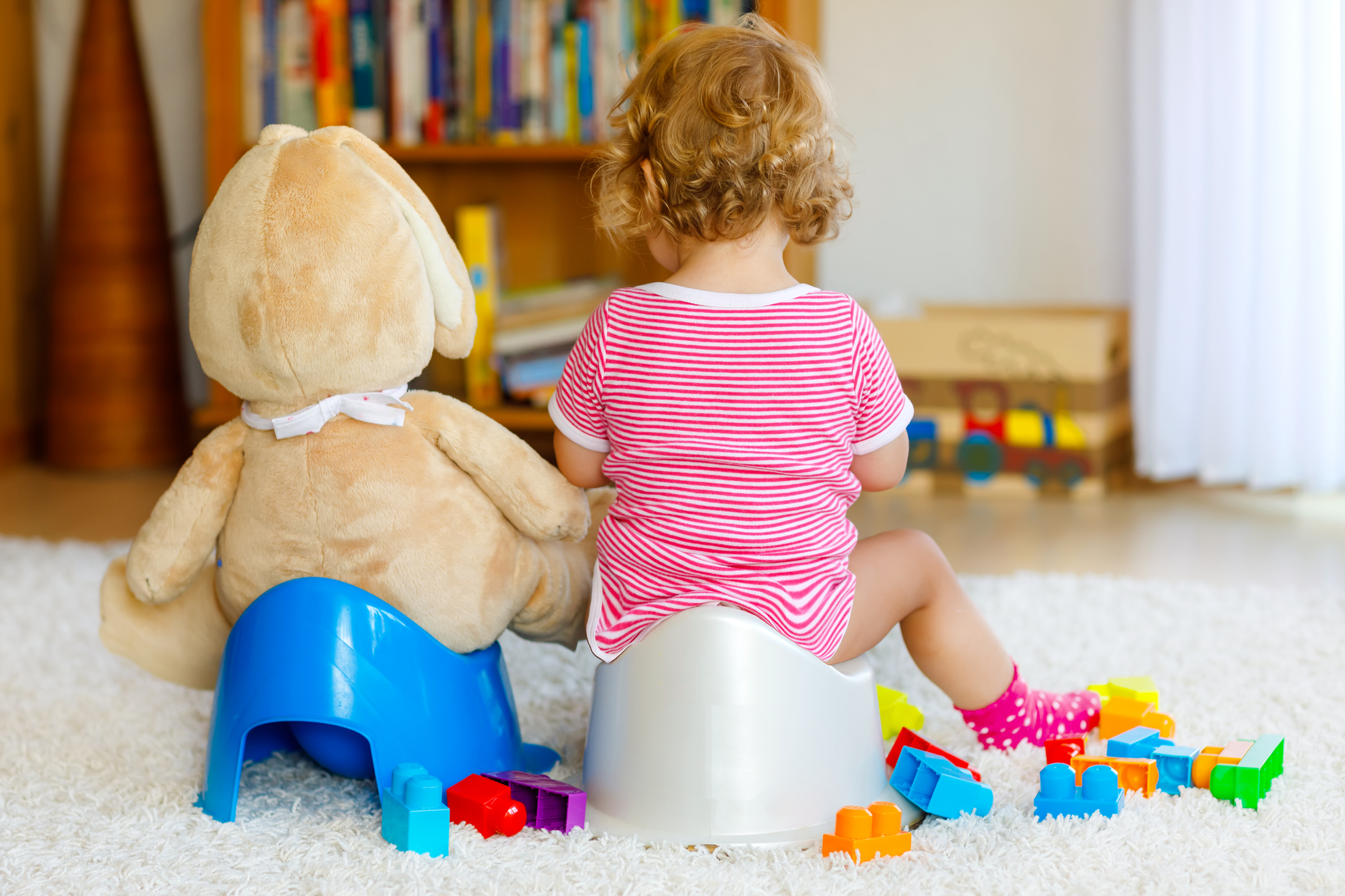 Preparing Your Toddler for Potty Training