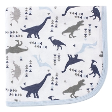 Touched By Nature Boy Organic Cotton Receiving/Swaddle Blanket, Dino