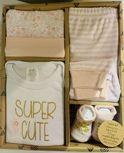 Baby Essentials Super Cute 4 Pieces Gift Box Layette Set, 0-6 Months Girl